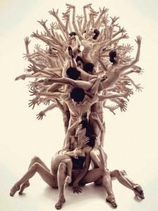 comme un arbre dans la vie